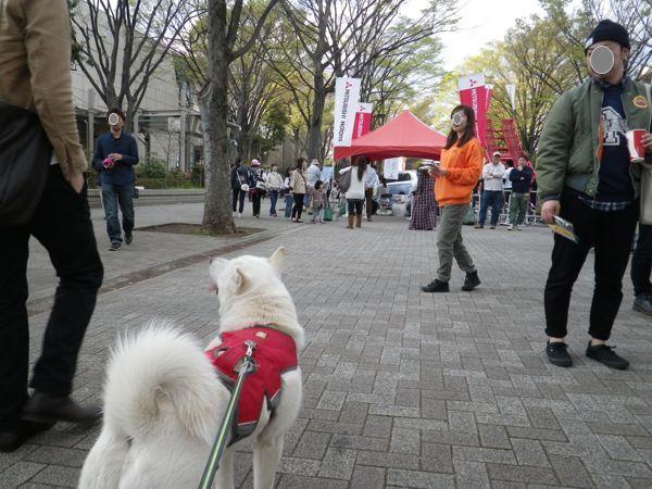2014.4.5 アウトドアデイ2014ジャパン3