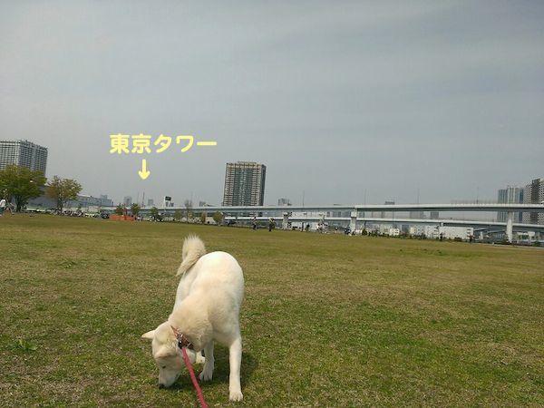 2014.4.13 竜牙1