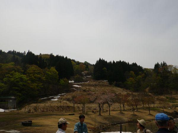 2014.4.29 杜々の森4