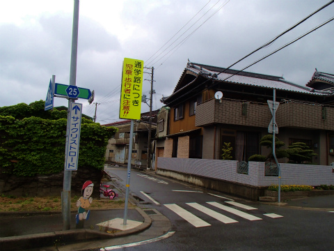 P4291935.jpg