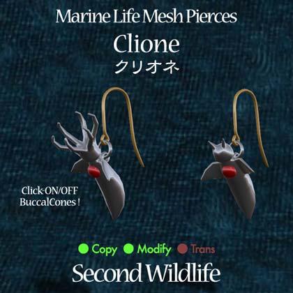 PiercePop_clione.jpg