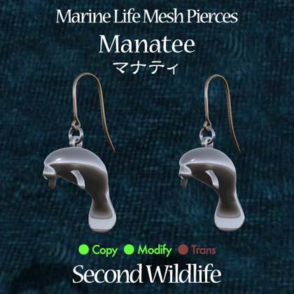 PiercePop_manatee.jpg