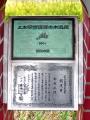 DSC_2028bg.jpg