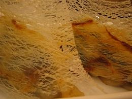 米網煎餃子