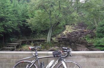 鍋倉渓の遊歩道