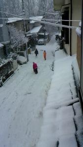 雪の中で元気が出る