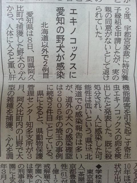 日経 エキノコックス