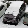 また大雪!