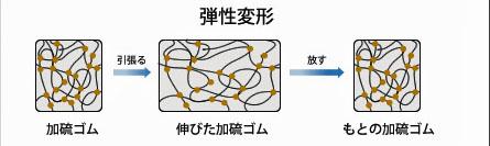 加硫ゴムの弾性変形