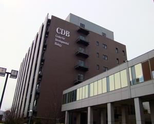 発生・再生科学総合研究センター