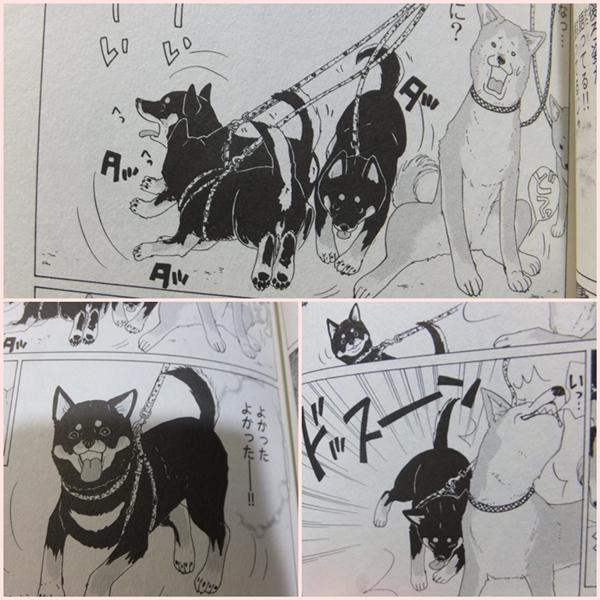 26-6コミック2