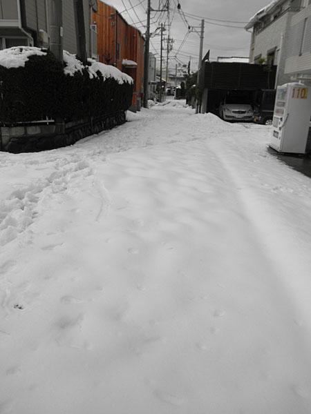 20140214雪②