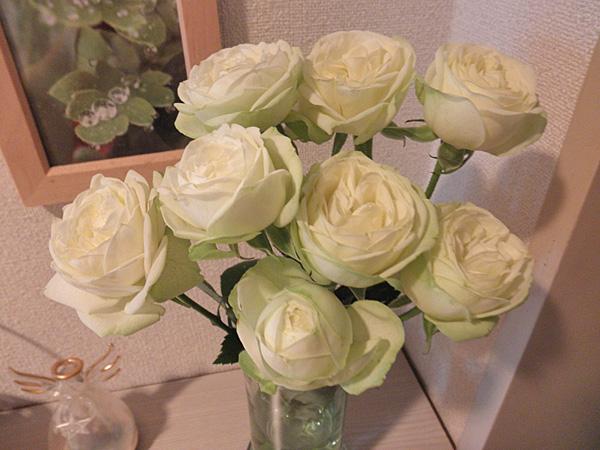 20140525花②