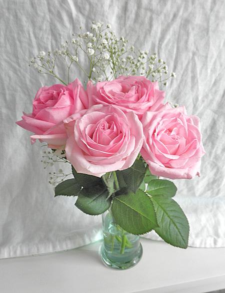 20140619薔薇①