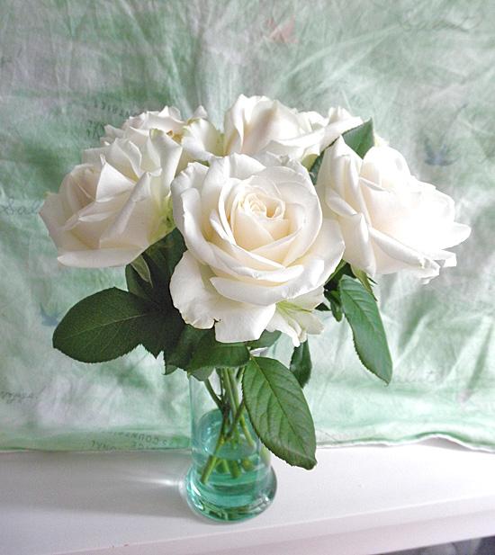 20140630薔薇①