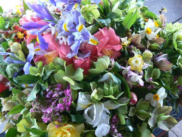 花御堂の花