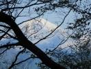 七面山登詣参道からの富士山1