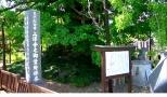 上沢寺の逆さ銀杏