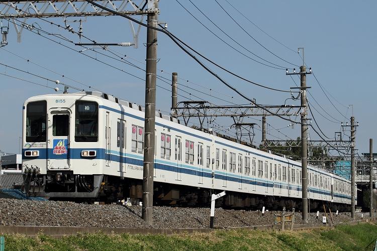 t-IMG_7294-3.jpg