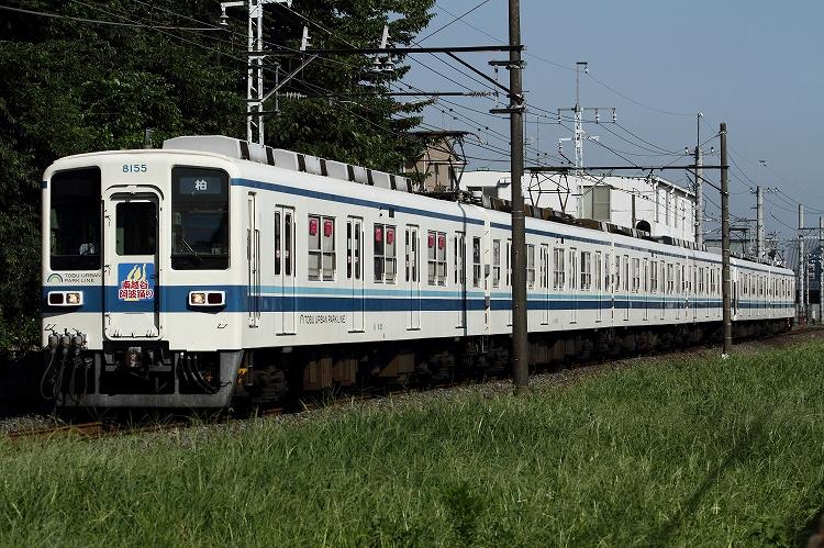 t-IMG_7311-1.jpg