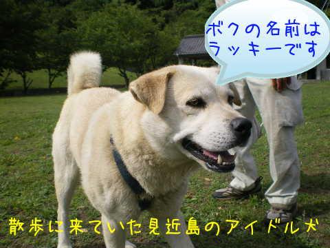2014070503.jpg