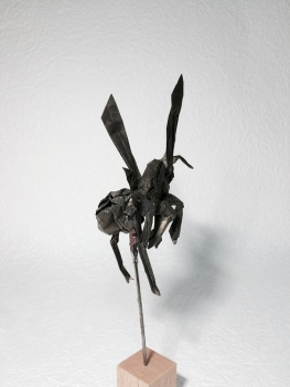 アシナガバチ4