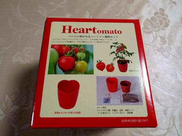 tomato03.jpg