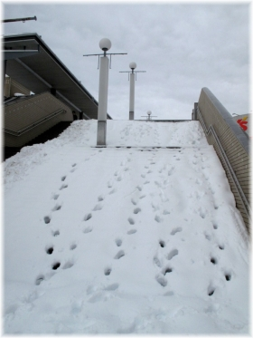 140215G 037階段踏み跡