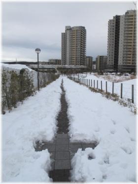 140215G 060遊歩道雪かき