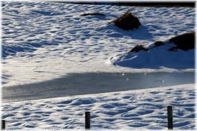140216E 012雪面C