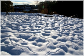140216E 022雪面D