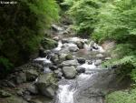 大柳川渓谷 (1)