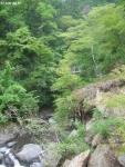 大柳川渓谷3