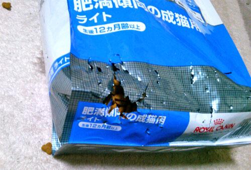 包装が破られたキャットフード