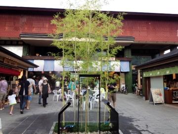 kyoto46.jpg
