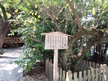 nagoyaatsuta2.jpg