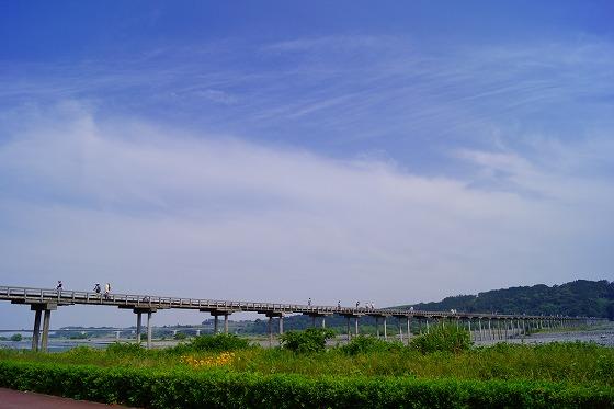 140528蓬莱橋-1
