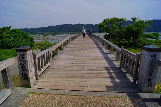 140528蓬莱橋-2