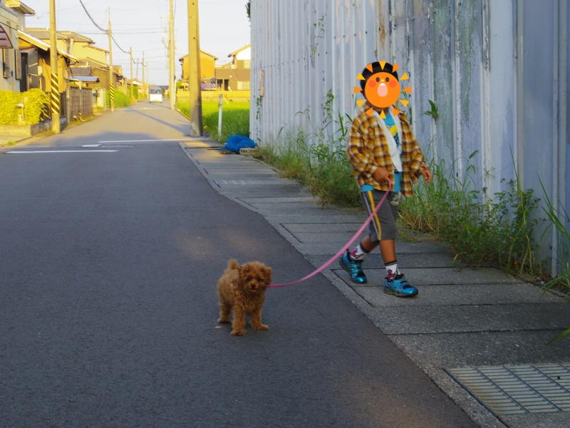 ピーチと散歩①