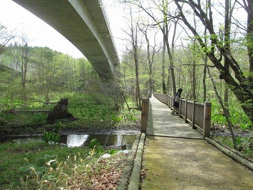 いざない橋140518