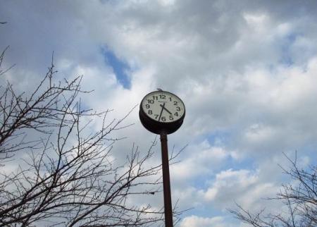 春の足音公園 033