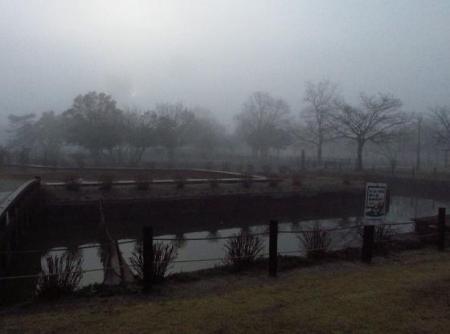 霧の朝 002