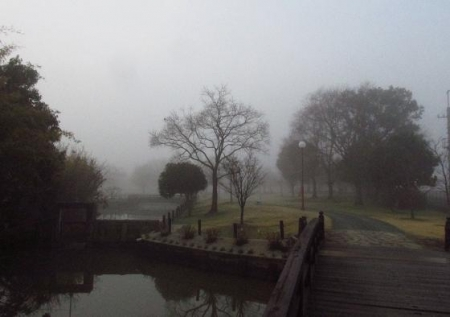 霧の朝 001