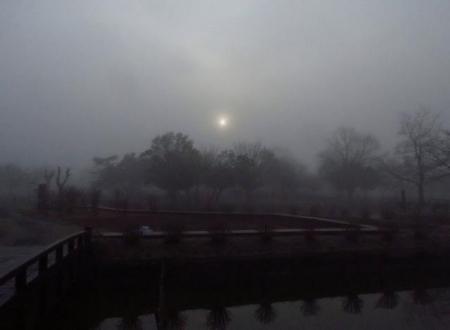 霧の朝 018