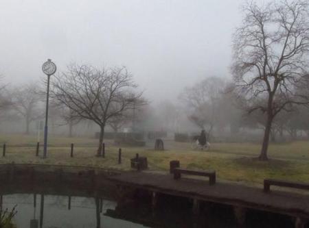 霧の朝 015