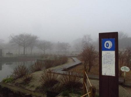 霧の朝 013