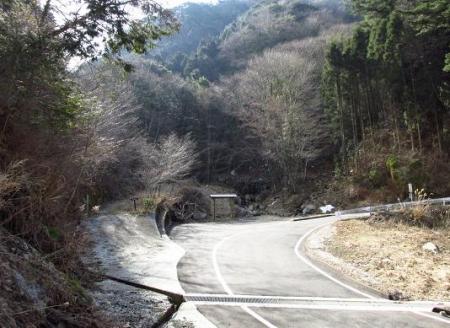 カラ迫岳星野 001