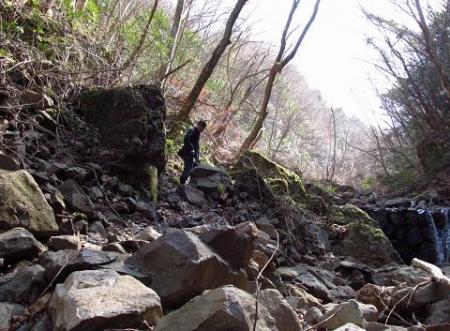 カラ迫岳星野 038