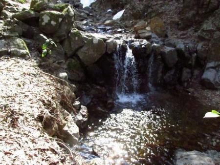 カラ迫岳星野 035