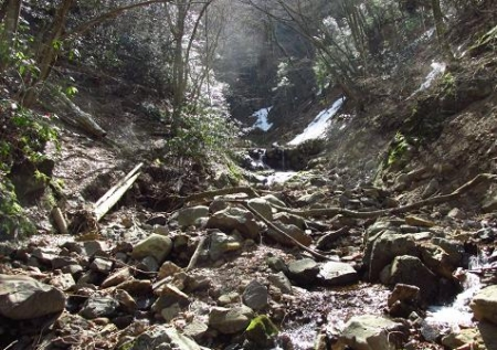 カラ迫岳星野 062